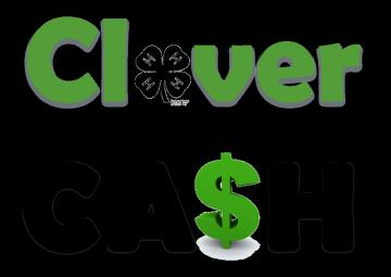 отзывы о кэшбэк сервисе CloverR